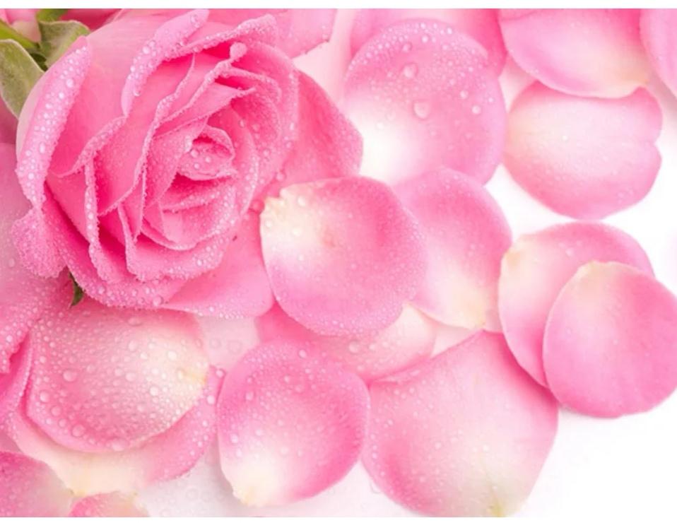 خواص گل رز برای زیبایی